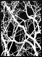 Thicket Background Stencil by Trish McKinney