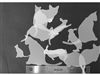 Cats and Rabbits StencilGuts Shapes