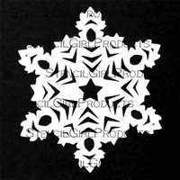 Snowflake Mask #2 by Cathy Nichols